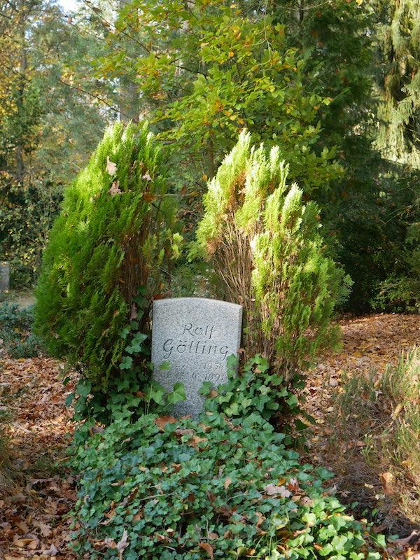 Wie Engelsflügel rankt sich der Baum um den Grabstein.